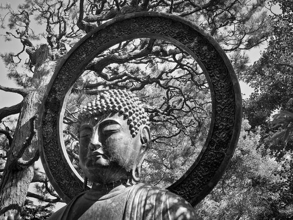 Golden Gate Buddha - San Francsico, CA